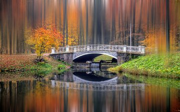 river, nature, forest, landscape, park, bridge, autumn, bokeh
