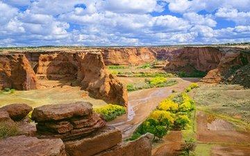 the sky, flowers, clouds, rocks, landscape, canyon, de chelly