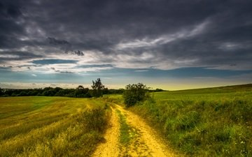 the sky, road, grass, clouds, trees, plants, landscape, horizon