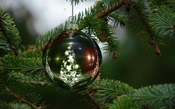 новый год, елка, хвоя, ветки, шар, рождество