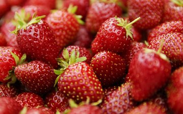 macro, strawberry, berries