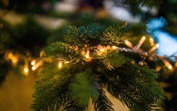 новый год, елка, хвоя, ветки, рождество, огоньки, гирлянда