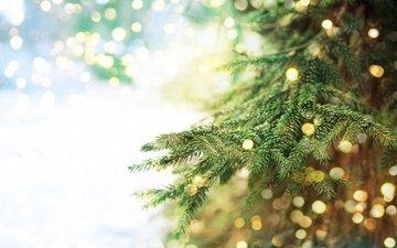 новый год, елка, хвоя, ветки, блики, рождество, боке