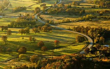 road, trees, nature, landscape, valley