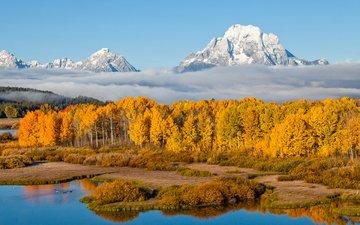 небо, деревья, река, горы, природа, лес, пейзаж, туман, осень