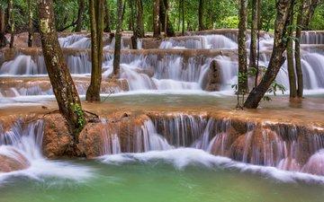 деревья, река, природа, лес, стволы, водопады