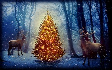 new year, tree, forest, deer, christmas