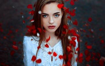 девушка, портрет, лепестки, взгляд, модель, губы, лицо, голубые глаза