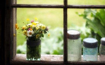 цветы, букет, окно, полевые цветы, банка, баночки