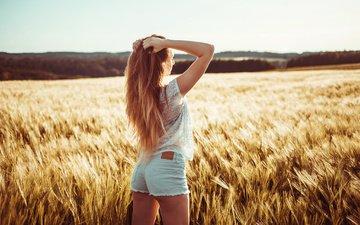 поле, горизонт, попа, колосья, пшеница, волосы, девушка модель, джинсовые шорты