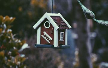 природа, размытость, домик, скворечник, кормушка, птичий домик