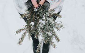 snow, needles, girl, branches, model, hands