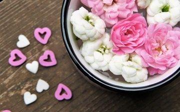 flowers, petals, heart, hearts