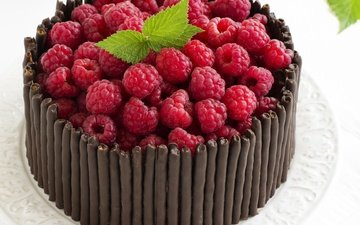 mint, raspberry, berries, chocolate, sweet, cake, dessert