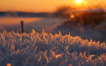 frost, raureif, glanz