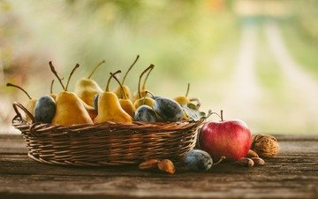 nuts, fruit, apples, pear, plum, autumn harvest