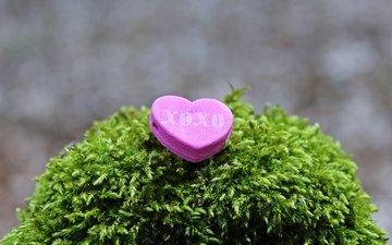 надпись, сердечко, сердце, любовь, мох