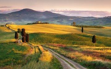 дорога, холмы, природа, пейзаж, поле, италия, простор, тоскана, пьенца