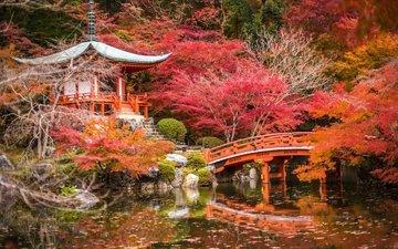 деревья, храм, парк, листва, мост, осень, пагода, япония, поток