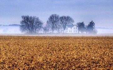 небо, деревья, туман, поле, ферма, канзас