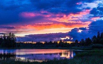 деревья, вечер, озеро, природа, закат, пейзаж, небо облака