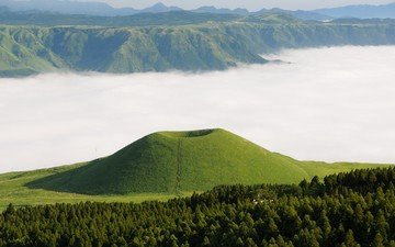 деревья, лес, туман, япония, вулкан, кумамото, вулкан асо