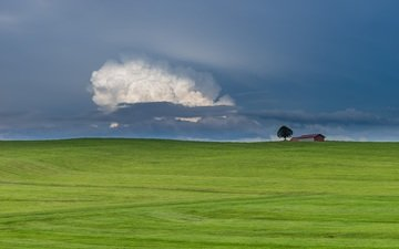 облака, природа, дерево, пейзаж, поле, горизонт, дом, голубое небо