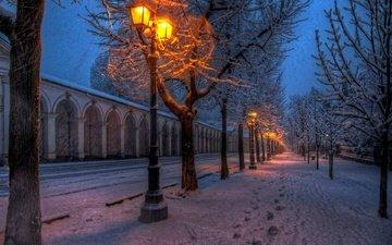 свет, дорога, деревья, фонари, снег, природа, зима, парк, улица