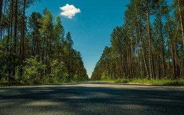 небо, дорога, облака, деревья, лето