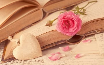 flower, rose, petals, books, heart, love, romance