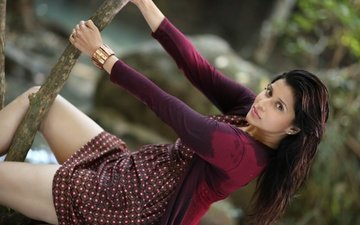 девушка, взгляд, волосы, лицо, актриса, индийская, маннара чопра, mannara chopra