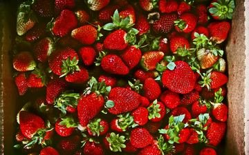 strawberry, berries