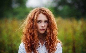девушка, портрет, взгляд, рыжая, губы, веснушки, анна, ivan warhammer