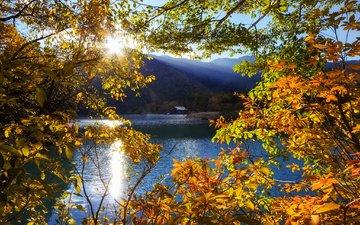 trees, lake, mountains, the sun, rays, autumn, japan, tochigi, nikko