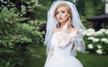 plants, girl, look, model, photographer, white dress, the bride, veil, ivan gorokhov