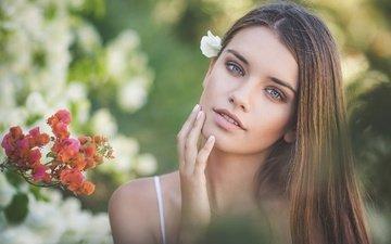 цветы, девушка, портрет, взгляд, модель, волосы, лицо, kobi alony, valery bloom
