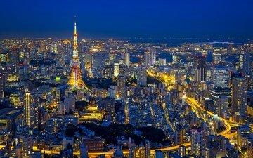 ночь, огни, панорама, япония, башня, токио