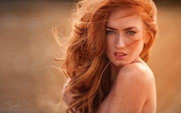 девушка, портрет, взгляд, рыжая, волосы, лицо, джек рассел, голое плечо