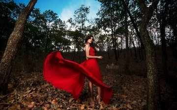 trees, nature, girl, background, look, hair, face, red dress, dry leaves