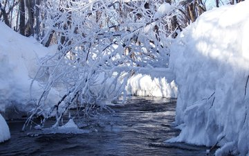 water, river, snow, nature, winter, stream, branches