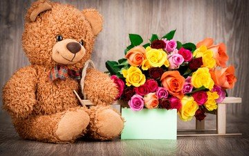 flowers, roses, bear, toy, bouquet, gift, valentine's day, 14 feb, holy