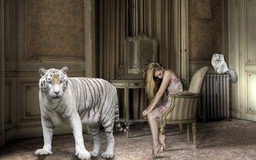 тигр, девушка, кошка, комната, креатив, волосы, кресло, белый тигр, босиком, большой кот, батарея