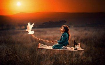 the evening, sunset, flight, field, girl, lantern, bird, child, dove, carpet, marhraoui