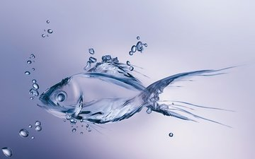 water, drops, graphics, fish, bubbles, 3d