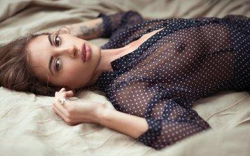 девушка, взгляд, модель, грудь, волосы, губы, лицо, блузка