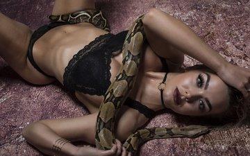 девушка, взгляд, змея, волосы, лицо, макияж, нижнее белье, браслеты, рози робинсон, джек рассел