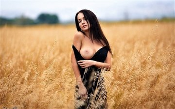 girl, pose, field, model, chest, tits, bokeh, angelina petrova