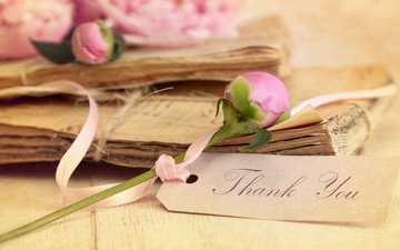 flowers, vintage, paper, documents, peonies