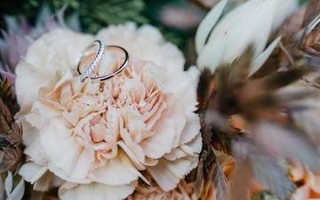 цветок, кольцо, свадьба, обручальные кольца, боке