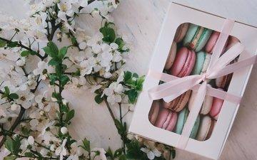 цветы, подарок, коробка, макаруны